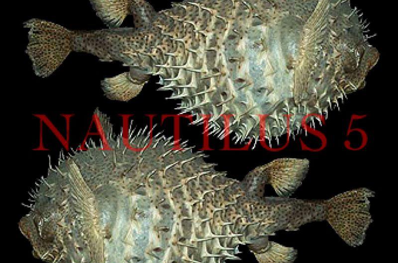 Porcupine Fish (43 см-46 см)