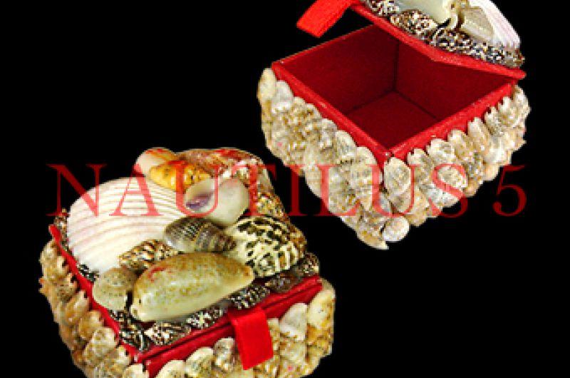 Shell Box mini ( 5x5x4cm )